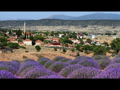 """Download Road Trip: Seydikemer to Kibrya to Turkey's """"Lavender Village"""" Kuyucak to Sagalassos to Antalya"""