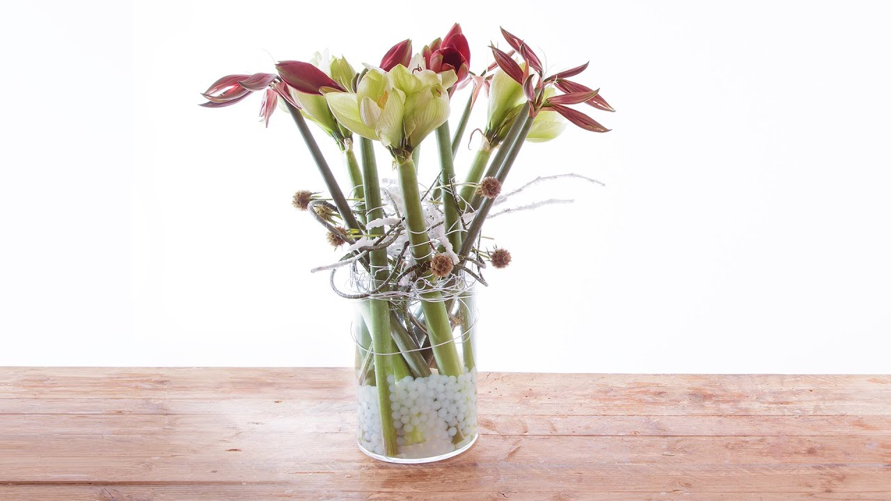 Amaryllis Vase Design Flower Factor How To Make Flower