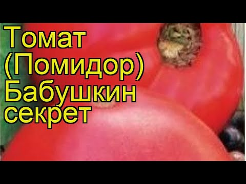 Томат обыкновенный Бабушкин секрет. Краткий обзор, описание характеристик, где купить семена