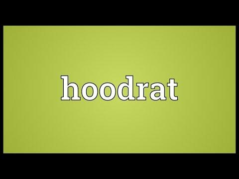 Hoodrat Meaning
