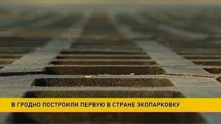 Первая в Беларуси экопарковка появилась в Гродно