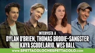 MAZE RUNNER   Dylan O'Brien, Thomas Brodie-Sangster, Kaya Scodelario, Wes Ball