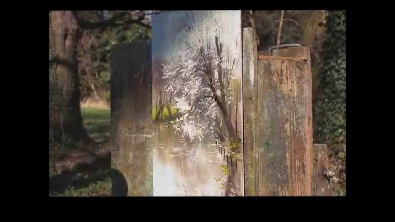 Mr Toutounov le peintre du bois de Boulogne  YouTube