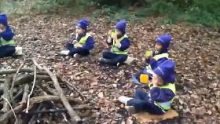 Reception at Forest School
