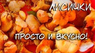 Вкусный и простой рецепт приготовления лисичек