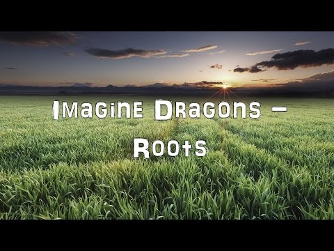 Imagine Dragons - Roots [Acoustic Cover.Lyrics.Karaoke]