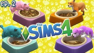 rainbow cuteness the sims 4 raising youtubers as pets ep 2 cats dogs expansion