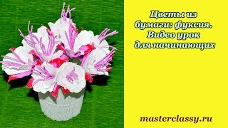 DIY. Paper Flower – Fuchsia. Цветы из бумаги: фуксия. Видео урок для начинающих