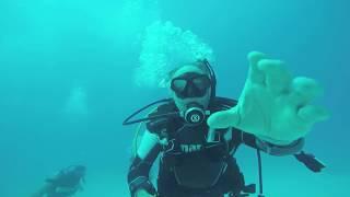 Scuba Diving in Cayo Coco Cuba March 2018
