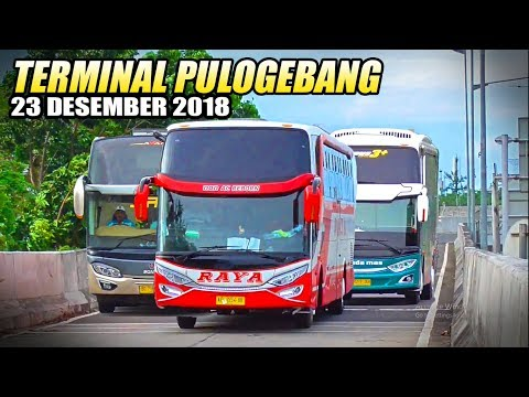 SPESIAL LIBURAN | Tempatnya Bis Keren di Jakarta. Terminal Bis Pulogebang, Jakarta Timur