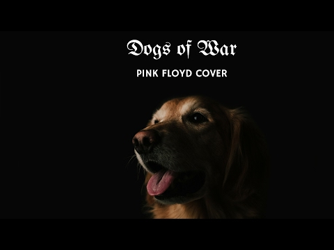 Pink Floyd - Dogs of War (cover)