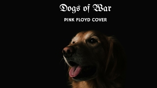 mb3 - dogs of war