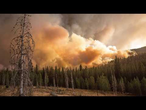Pacific Northwest Research Station  Fire Science
