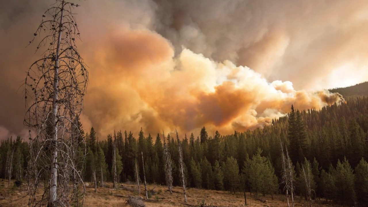 Pacific Northwest Research Station Fire Science - YouTube