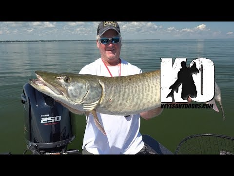 Mid-Summer Muskie Fishing in Green Bay, Wisconsin