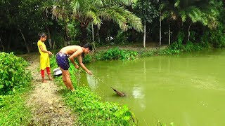 Net Fishing   Live Fish Hunting In village   Traditional cast net fishing (Part-11)