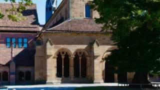 Robert Schumann - CARNAVAL OPUS 9: (1) Preambule - Pierrot - Arlequin - Valse noble