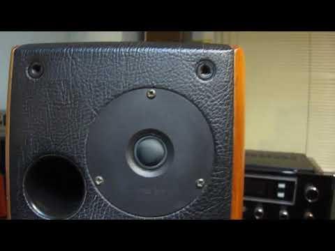 lungyim~sonus-faber-concertino