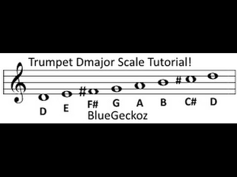 D Major Scale On Trumpet Tutorial - YouTube