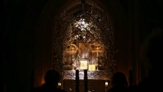Palestrina: Sicut cervus - Sitivit anima mea