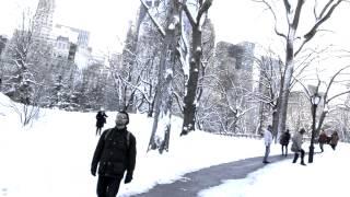 Winter Scene, Central Park