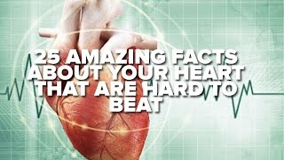 25 Amazing Facts About Your Heart That Are Hard To Beat