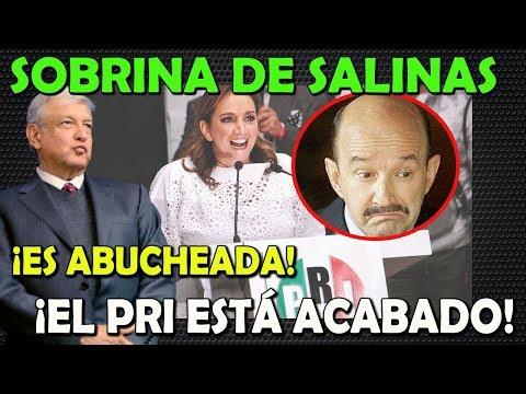 SOBRINA DE CARLOS SALINAS ES ABUCHEADA EN EL CONGRESO - CAMPECHANEANDO