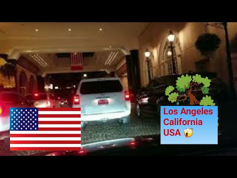 Los Angeles Driving Tour: Beverly Hills, Hollywood Walk of Fame and Bonus Footage