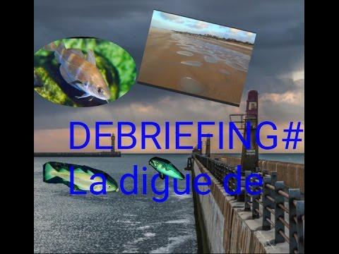 DEBRIEFING # 1 : La digue de Malo
