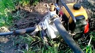 видео Бензиновые мотопомпы