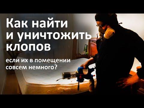 Видео: Правильное уничтожение клопов в квартире, пр-т Мира, Москва