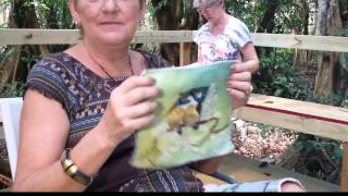 Painting in the Palmas del Mar Pterocarpus Forest Thumbnail