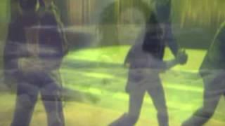 Michael Jackson Phoenix Rising