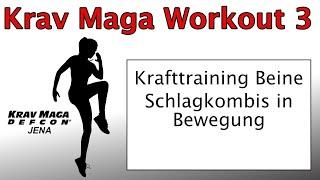 Krav Maga Workout 3 2021