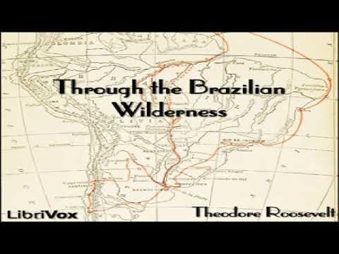 Through the Brazilian Wilderness | Theodore Roosevelt | Exploration, Memoirs | Talkingbook | 6/7