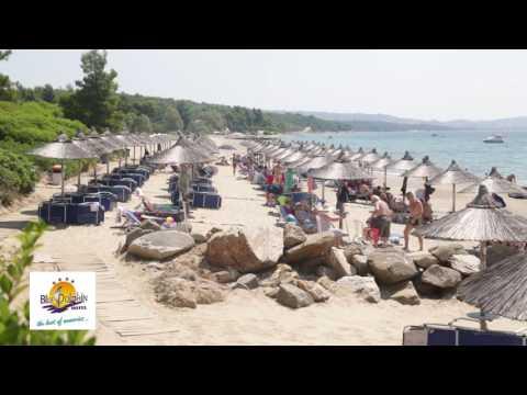 Blue Dolphin hotel Πάμε Ελλάδα - Χαλκιδική