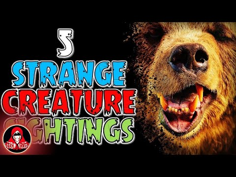 5 REAL Strange Creature Sightings - Darkness Prevails
