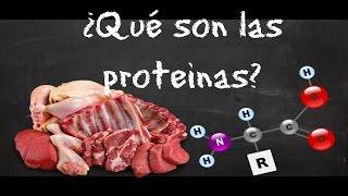 ¿Qué son las Proteinas?