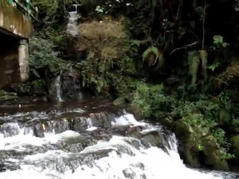 Anandadhara Bohichey    Indrani Sen   YouTube