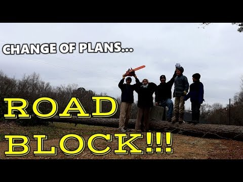 Storm Knocks Down Tree / Road Block / Plans Change / Clearing The Road / Chain Saw/ Cutting Wood