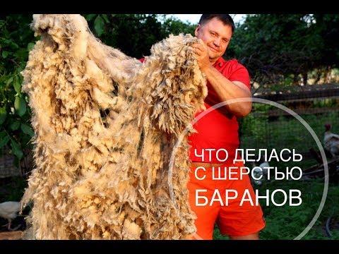 Что можно сделать из овечьей шерсти в домашних условиях