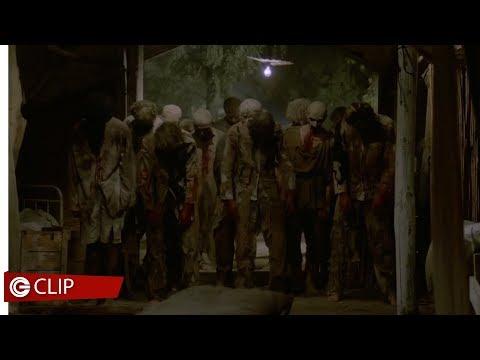 Zombi 2 - Contro gli zombie