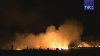 Пожары в Португалии: погибли десятки людей