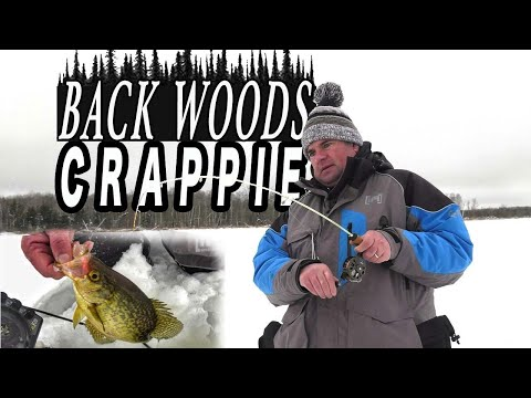Backwoods Crappie In Northern Minnesota