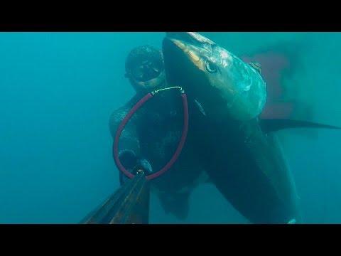 Podvodni ribolov - Boban Radosevic