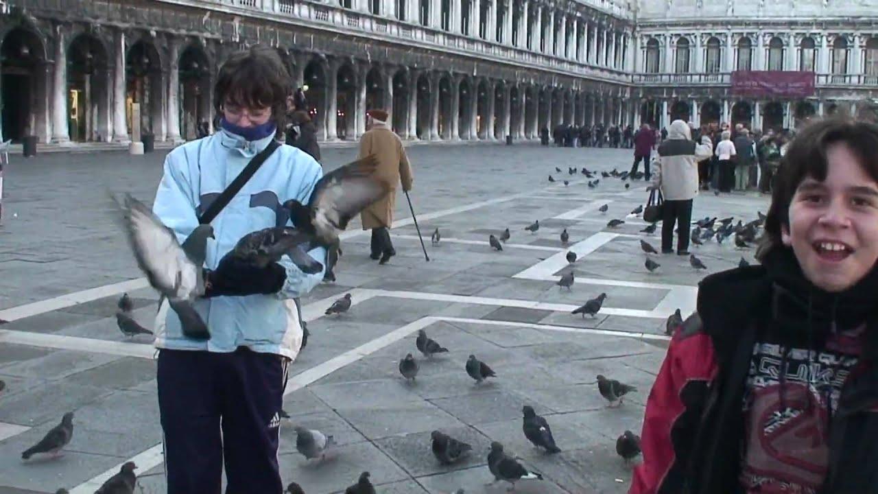 Venecia, palomas de la plaza San Marcos dic.2007 - YouTube