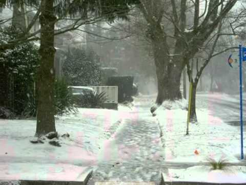 Ninge iar pe strada mea Ilie Micolov.flv