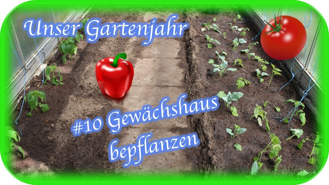 Unser Gartenjahr 10 Gewachshaus Bepflanzen Engelchen Youtube