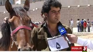 Iran Kurdistan province, Horse beauty festival جشنواره زيبايي اسب استان كردستان ايران