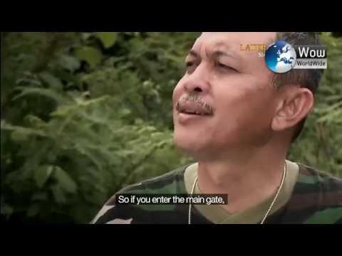 สารคดี การฝึกสุดทรหดของทหารไทยและประเทศในเอเชีย